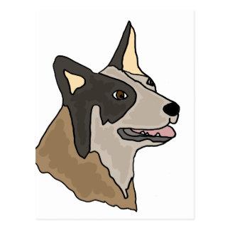 Australian Cattle Dog Art Postcard
