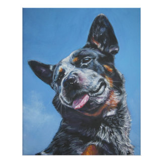 australian cattle dog blue heeler art print poster
