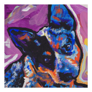 australian cattle dog blue heeler pop art poster