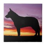 Australian Cattle Dog Ceramic Tiles
