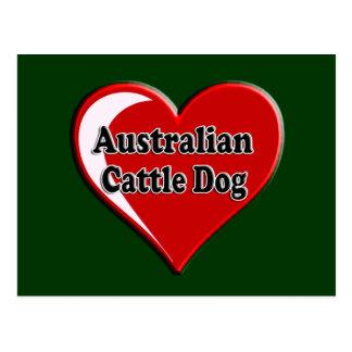 Australian Cattle Dog Dog Heart for Dog Lovers Postcard