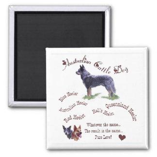 Australian Cattle Dog Gifts Magnet