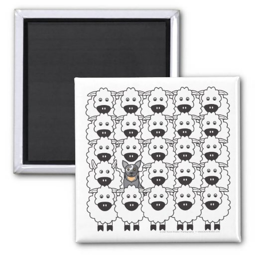 Australian Cattle Dog in the Sheep 2 Inch Square Magnet