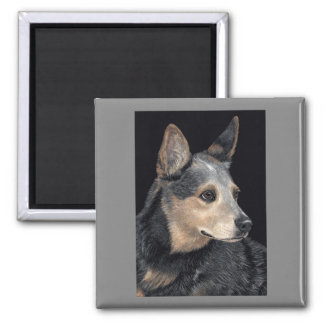 "Australian Cattle Dog Magnet - ""Quigley"""