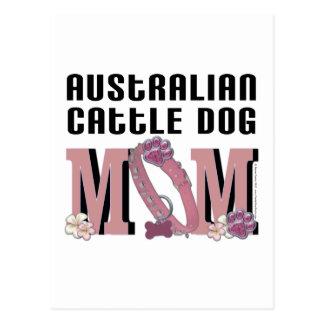 Australian Cattle Dog MOM Postcard