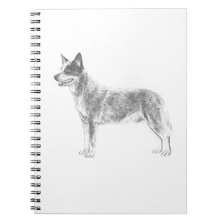 Australian Cattle Dog Notebook