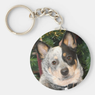 Australian Cattle Dog Photo Keychain