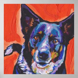 Australian Cattle Dog Pop Art Poster