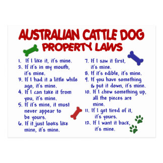 AUSTRALIAN CATTLE DOG Property Laws 2 Post Card