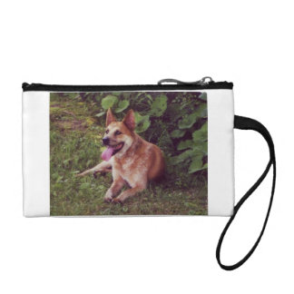 australian cattle dog red laying coin wallet