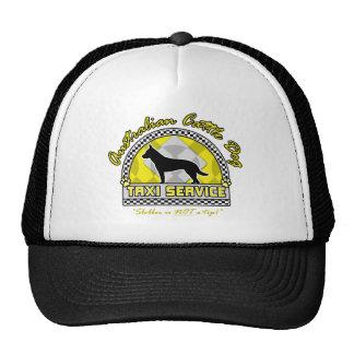 Australian Cattle Dog Taxi Service Trucker Hat