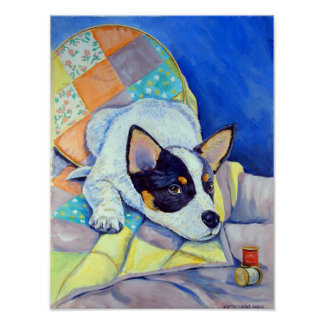 Australian Cattle Dog Wall Print