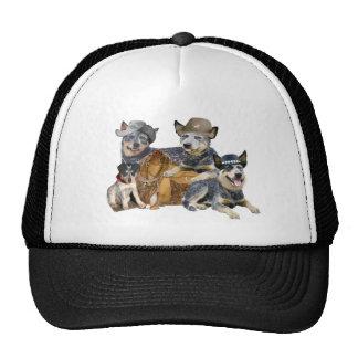 Australian Cattle Dog Western Portrait Trucker Hats