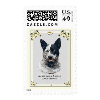 Australian Cattle Dogs Rock!! USA Postage