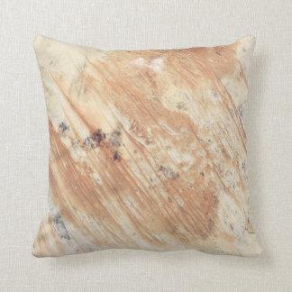Australian Desert from Space Pillow
