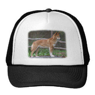 Australian Dingo 9Y209D-268 Trucker Hat