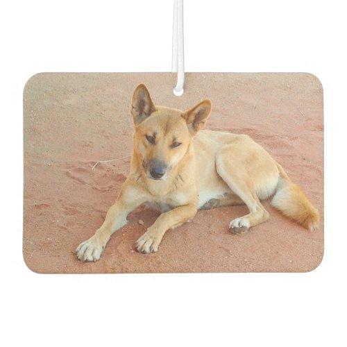 Australian dingo car air freshener