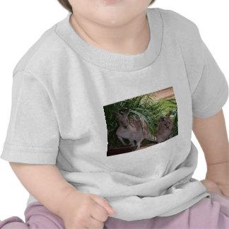 Australian Eastern Grey Kangaroo Shirts