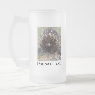 Australian Echidna Cute Animal Photo Frosted Glass Beer Mug
