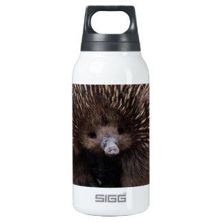 Australian Echidna Cute Animal Photo Insulated Water Bottle