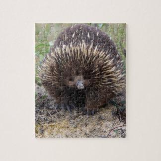 Australian Echidna Cute Animal Photo Jigsaw Puzzle