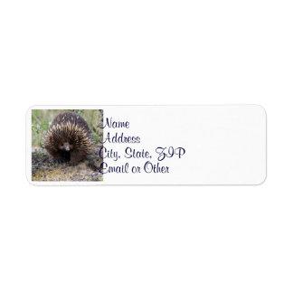 Australian Echidna Cute Animal Photo Label