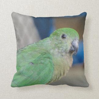 Australian Female King Parrot Pillows