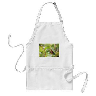 australian flora adult apron