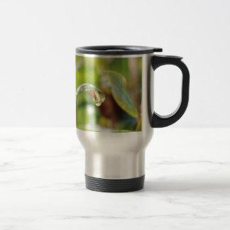 australian flora travel mug