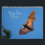 "Australian Flying Fox Bat Calendar - 3 sizes<br><div class=""desc"">Flying Foxes are incredibly fascinating yet highly misunderstood animals, and this 12 Month Calendar aims to do justice to the cuteness and beauty of the species residing in Australia. Many of the photos were taken during my two times volunteering at BatReach Kuranda, who I am not affiliated with but do...</div>"