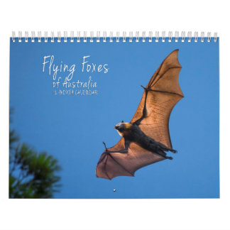 Australian Flying Fox Bat Calendar - 3 sizes