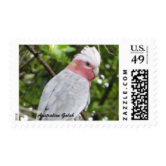 Australian Galah - Roseate Cockatoo 47c Stamp