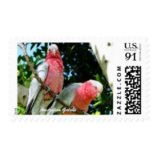 Australian Galah - Roseate Cockatoo 89c Stamp