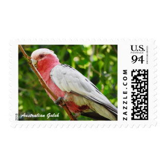Australian Galah - Roseate Cockatoo 94c Stamp