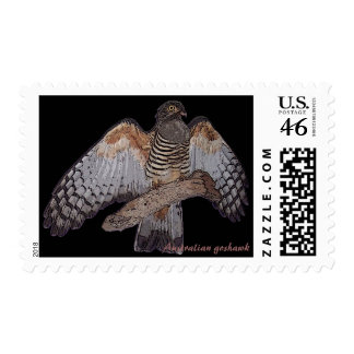 Australian goshawk stamp