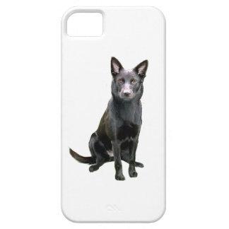Australian Kelpie (A) - Australlian Shepherd iPhone SE/5/5s Case