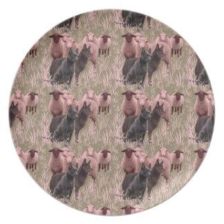 australian Kelpie and sheep fancy plate