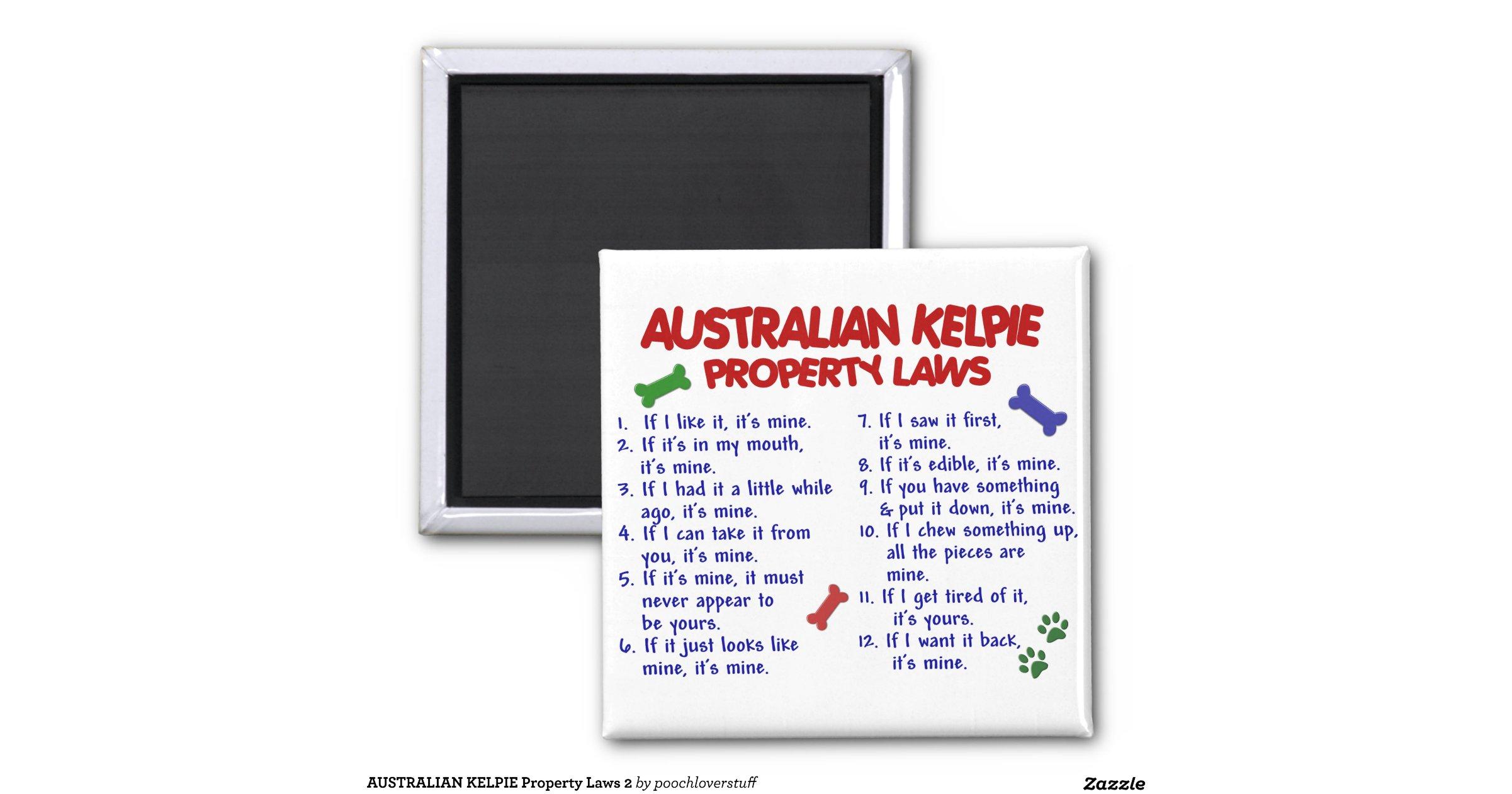 australian_kelpie_property_laws_2_2_inch_square_magnet ...