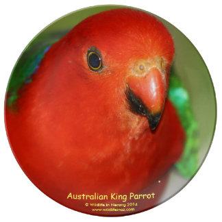 Australian King Parrot Porcelain Plate