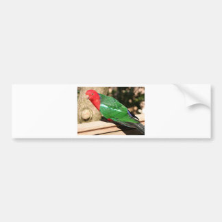 Australian King Parrot (red & green) Bumper Sticker