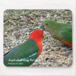 Australian King Parrots Mouse Pad