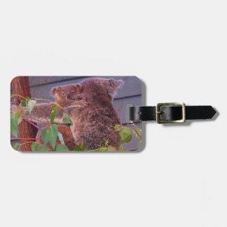 Australian koala and baby tags for bags