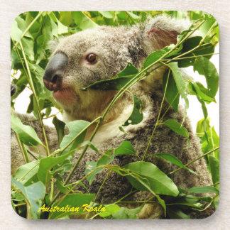 Australian Koala Beverage Coaster