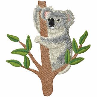Australian Koala
