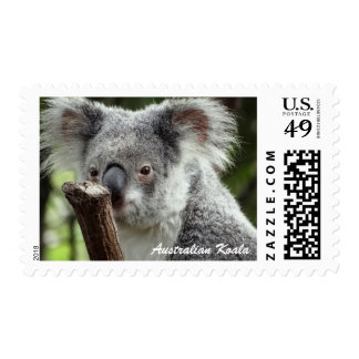 Australian Koala Postage 47c Stamp