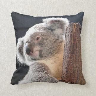 Australian Koala Throw Pillow