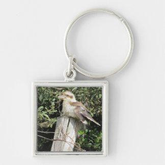 Australian Kookaburra (Kingfisher Family) Keychain