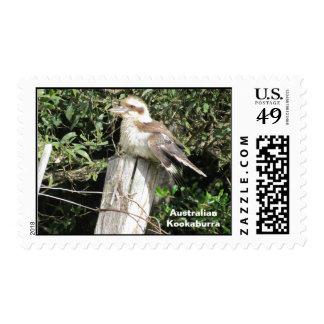 Australian Kookaburra (Kingfisher Family) Stamps