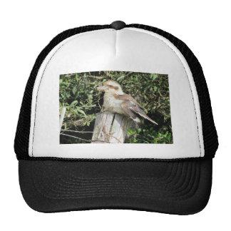 Australian Kookaburra (Kingfisher Family) Trucker Hat