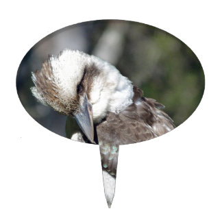 Australian kookaburra looking for a meal.jpg cake topper